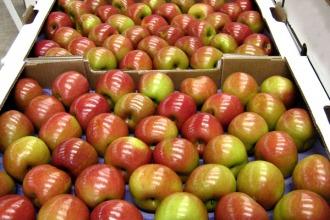 El ministro Buryaile recibirá a los fruticultores de Río Negro y Neuquén
