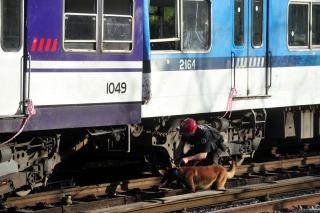 """Profesionales sostienen que el tren y las vías """"estaban nuevos"""""""