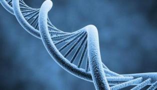 Desarrollan un análisis de sangre que sirve para detectar ocho tipos de cáncer