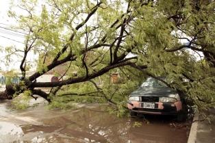Fuerte temporal de viento, lluvia y granizo provocó daños