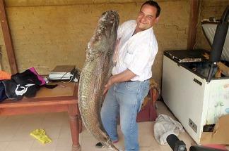 El concurso argentino de pesca del surubí convoca a miles de turistas en Reconquista
