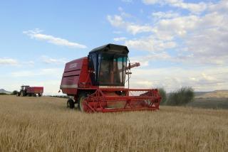 El sector agroexportador liquidará unos US$ 5.700 millones hasta fin de año