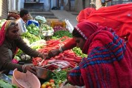 Púshkar, una pequeña ciudad india, con templos brahmanes y una gran fiesta de barriletes en las terrazas