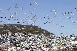 La provincia estudiará cómo se tratan los residuos en 16 municipios
