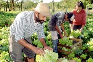 Agricultura familiar y lechería, los ejes del acuerdo con el IICA