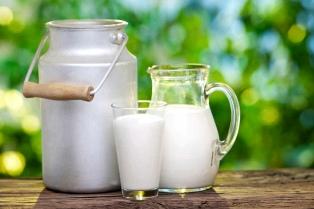 Más de 7.000 niños nacen con alergia a la proteína de la leche de vaca