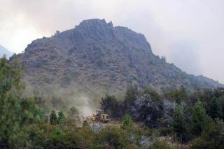 Son al menos 34.000 las hectáreas afectadas por los incendios en Chubut