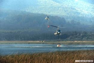 Avanza sin control un incendio que ya consumió 5.300 hectáreas