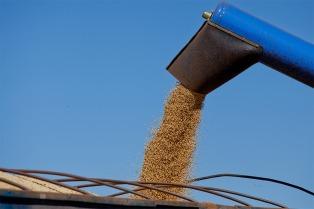 El campo generará este año dos mil millones dólares más en exportaciones que en 2016