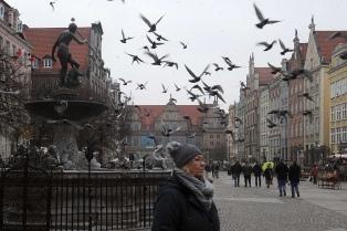 La oposición logró imponerse en las grandes ciudades polacas