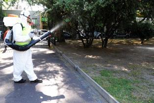 Realizarán tres nuevos operativos para prevenir el dengue en Jujuy