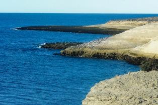 Puerto Madryn: playas blancas, avistajes, deportes y gastronomía para el verano