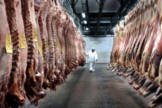 Llegó el primer embarque de carne vacuna argentina a Canadá tras 15 años de cierre de ese mercado