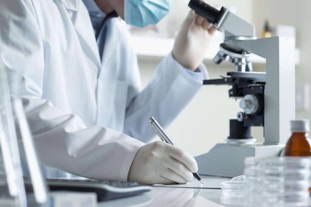 El órgano del cuerpo humano recién descubierto — Intersitium