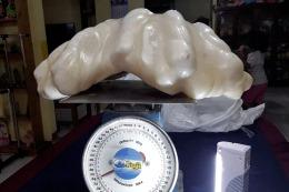 Encuentran en Filipinas una perla de 34 kilos, la m�s grande del mundo
