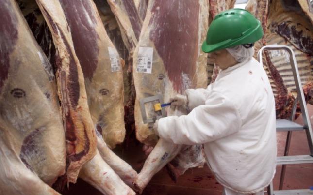 China volverá a comprar carnes a Brasil