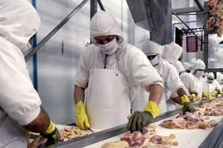 El gobierno entrerriano impulsa un proyecto para exportar pollos y harina a Rusia y Vietnam