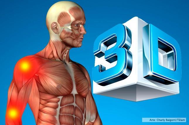 El estudio de la anatomía será digital y en 3D - Télam - Agencia ...