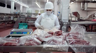 La exportación de carne mejoró 16% en el primer cuatrimestre porque el margen bruto llega a 49% en 2017