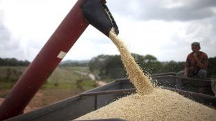 El 46% de las exportaciones argentinas son granos, harinas, aceites y subproductos