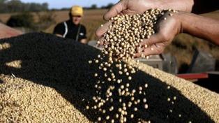 El Banco Provincia duplicó el crédito para la agroindustria