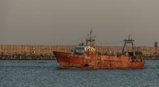 La producción pesquera creció 7,5% durante el primer semestre