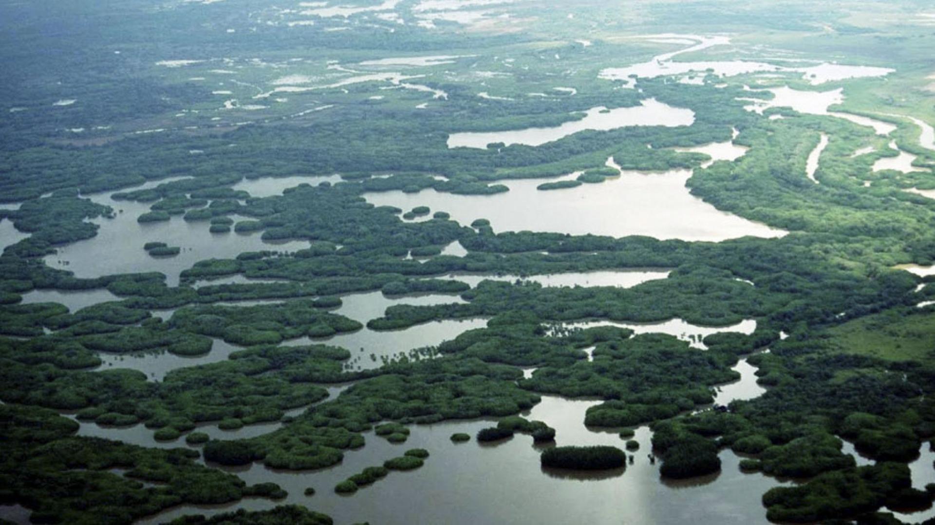 60 millones de hectáreas son reservorios de agua dulce para el planeta