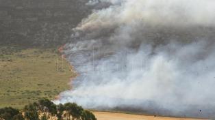 Los bomberos y un avión hidrante controlaron un incendio en Balcarce