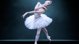 """Iñaki Urlezaga cierra con """"El lago de los cisnes"""" el programa federal del ballet """"Danza"""""""