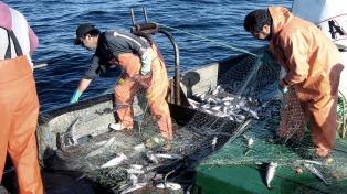 El sector pesquero finalizó 2017 con exportaciones récord: U$S 1978 millones