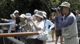 La llegada de turistas extranjeros tuvo 16 meses de crecimiento sostenido