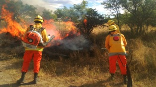 Son cuatro los focos de incendios que están activos en La Pampa