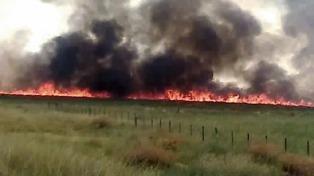 """El intendente de Villarino dijo que """"se perdieron 107.000 hectáreas"""" por los incendios"""