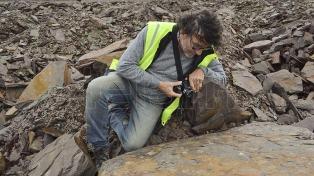 El geólogo que halló el registro de vida más antiguo de Sudamérica no descarta nuevos hallazgos