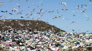 La preocupación por los residuos viene de la época colonial