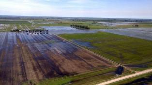 El río Salado creció en las últimas horas, el Paraná está estacionario y asisten a familias afectadas