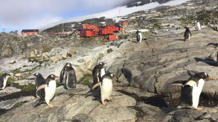 Desde hace 113 años, la soberanía y la ciencia dicen presente en la Antártida