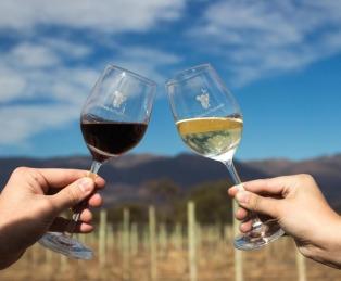 Presentan un recurso contra la prohibición de publicitar vino en la vía pública