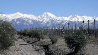 El valle de Uco y el sur de la provincia invitan a disfrutar la naturaleza, el vino y el turismo aventura