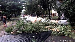 Una mujer y sus dos hijas murieron al caer un árbol en medio del temporal