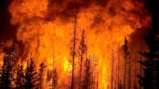 La justicia chilena investiga 521 causas iniciadas por los incendios
