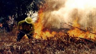 Aún hay 44 incendios forestales activos