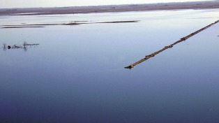 Inundaciones: cortan la Ruta Nacional 7 que atraviesa la laguna Picasa