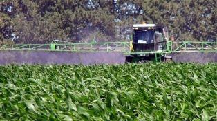 Organizaciones ambientalistas alertaron sobre la modificación de la ley de agroquímicos