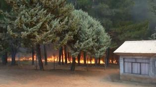 Alerta roja por incendio forestal en la comuna de Quillón