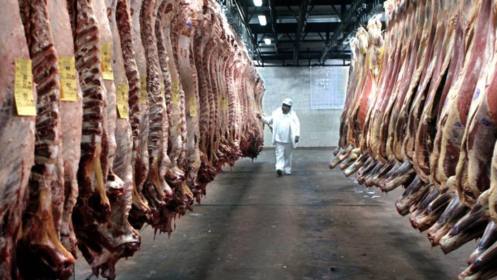 Hubo exportación récord de carne vacuna y el consumo interno bajó 5 kg por habitante