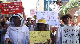 Organizaciones ambientales protestan contra la nueva Ley de Bosques