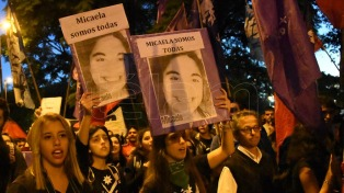 """La OEA celebró la ley Micaela: """"Es un avance significativo contra la violencia a la mujer"""""""