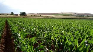 Empresarios de la India están interesados en productos agrícolas de Córdoba