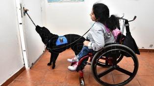 Entregaron una perra de asistencia entrenada por internas de un penal a una joven con discapacidad motriz